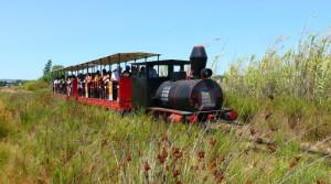 barril-beach-train